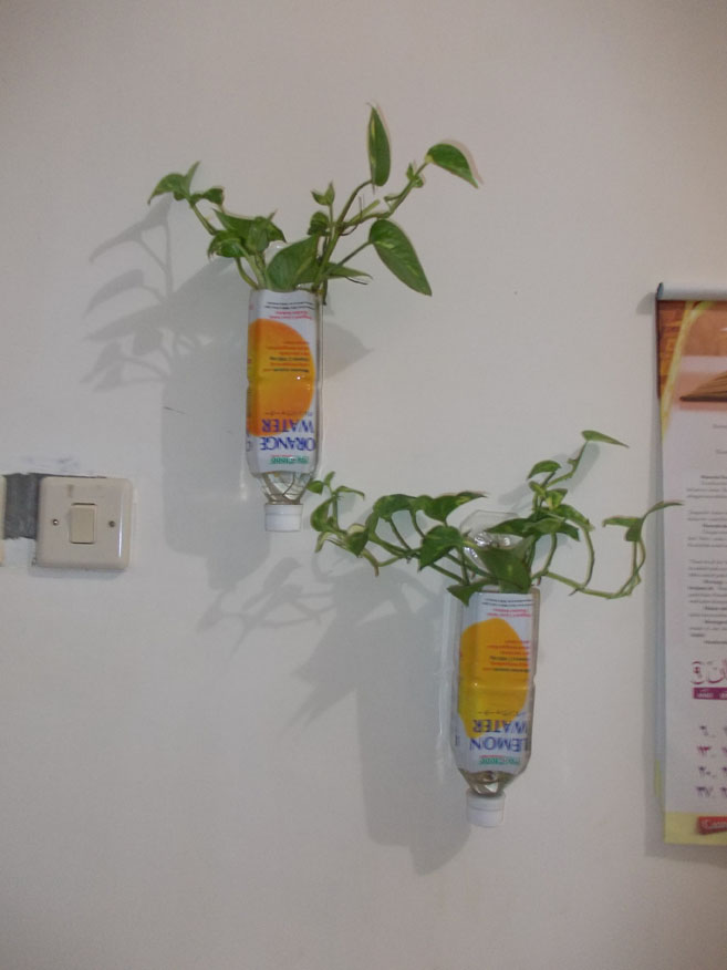 cara membuat hiasan rumah yang segar dan minimalis dari bunga sampah